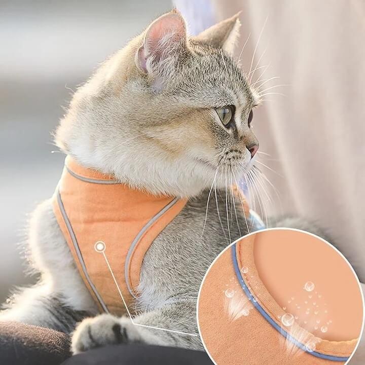 Cat Harness Leash Set Suede